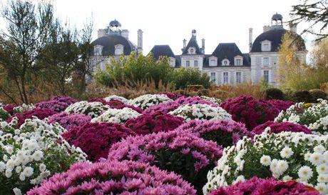 Jardins d\'automne à Cheverny
